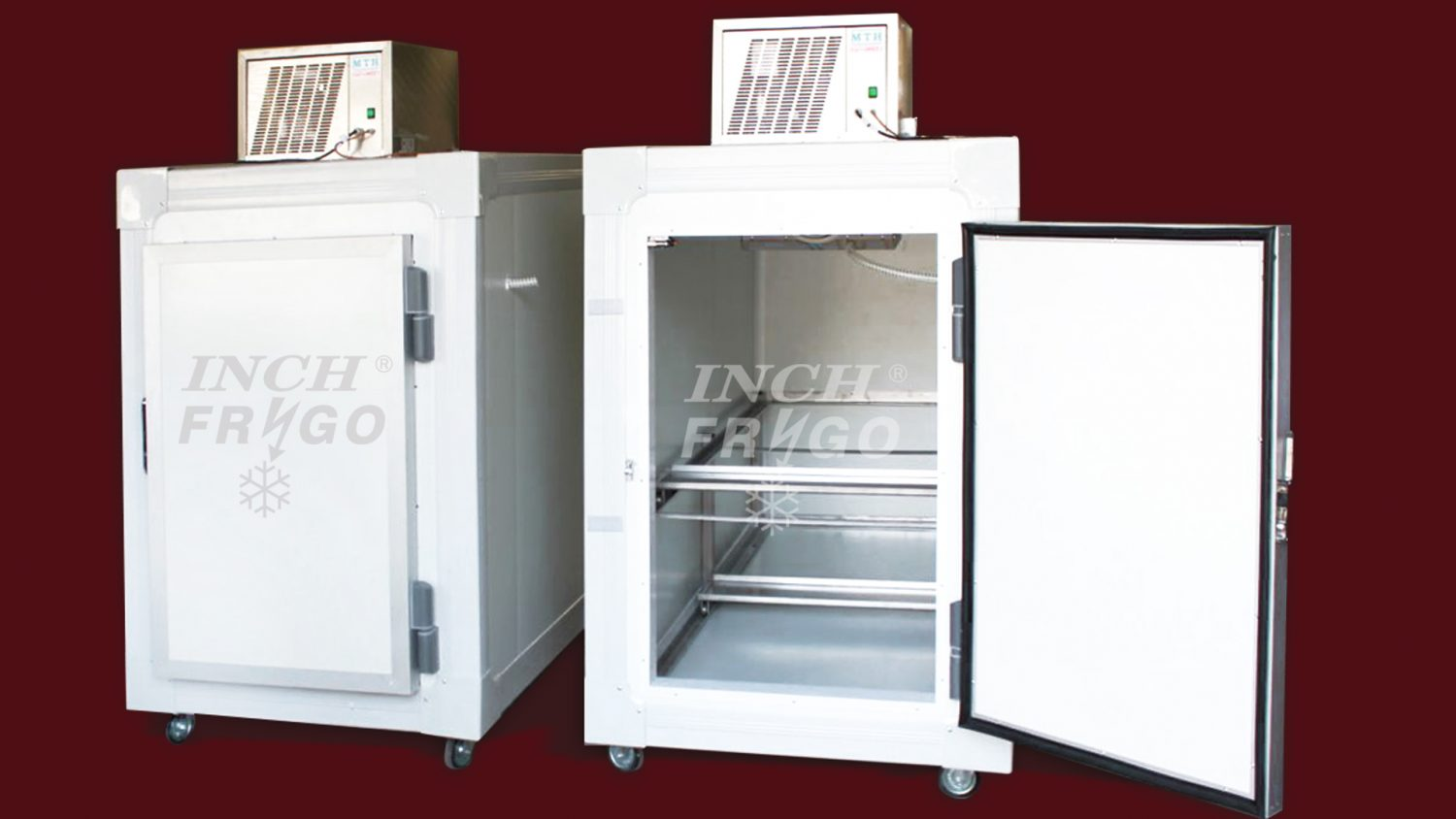 Cold storage cabinets for deceased bodies-model 2021